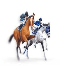 casinoonlinecanadian.net virtual horse racing